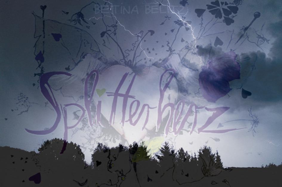 http://www.bettinabelitz.de/wp-content/uploads/2010/07/Gewitterhimmel_Splitterherz_schwach.jpg