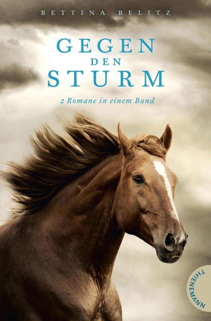 Cover von Gegen den Sturm